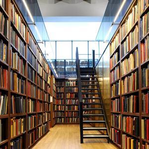 Библиотеки Каменоломен