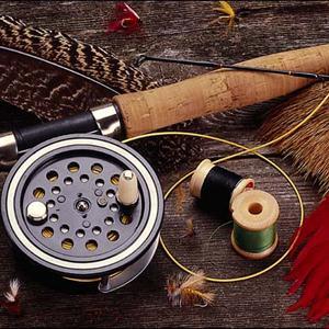 Охотничьи и рыболовные магазины Каменоломен